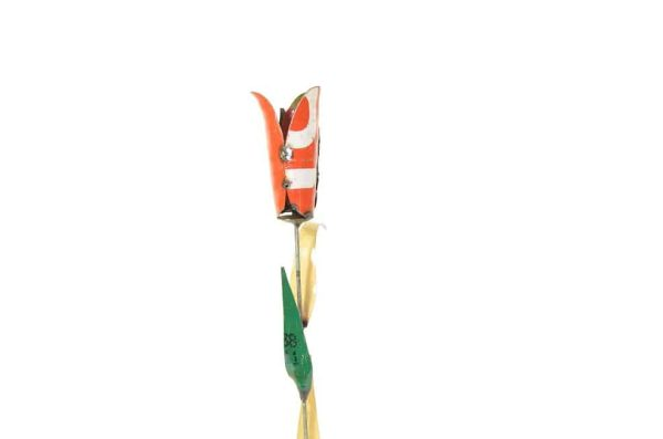 scrapmetal tulp, tuinsteker tulp, tuinsteker bloem