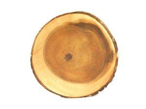 boomschijf, onderzetter