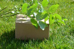 wat is greenwashing?