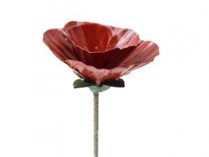 tuinsteker rode bloem