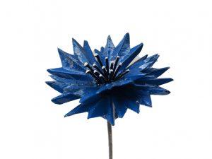 tuinsteker korenbloem blauwe bloem