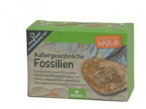 uithakset fossielen, fossielen opgraven